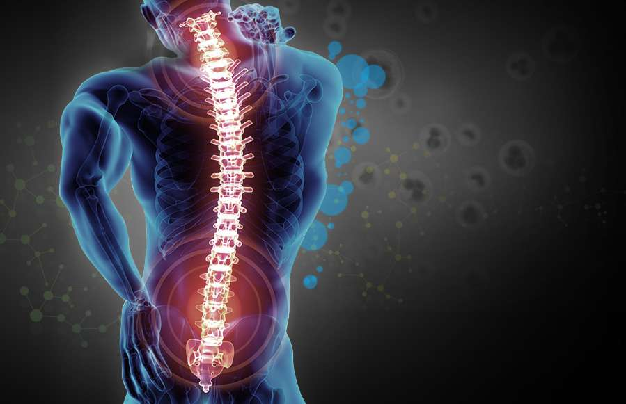 Neck ,Back and Joint Pain